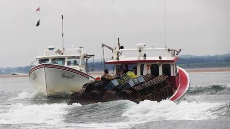 New federal changes good for fishing industry, environment: Conservation Council