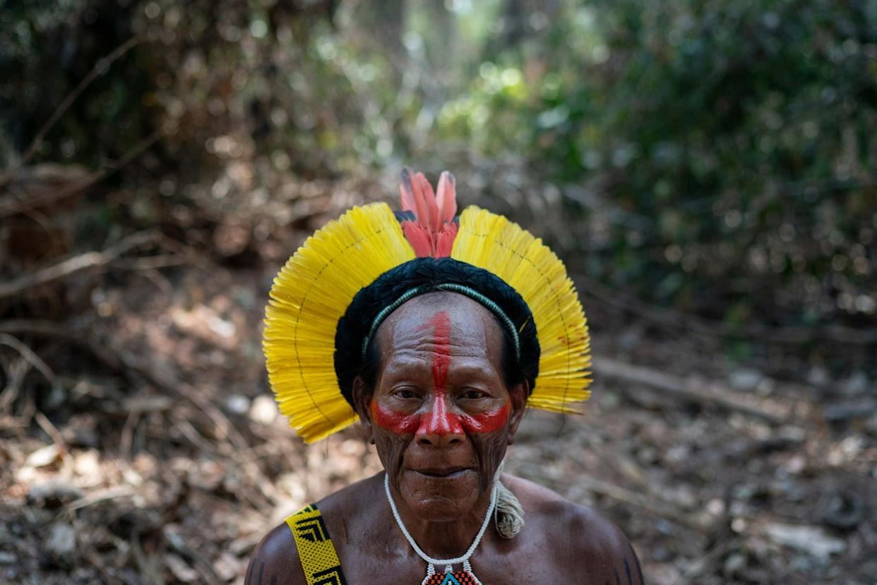 Krimej village indigenous Chief Kadjyre Kayapo, of the Kayapo indigenous community, poses for a photo on the path opened by illegal loggers: AP