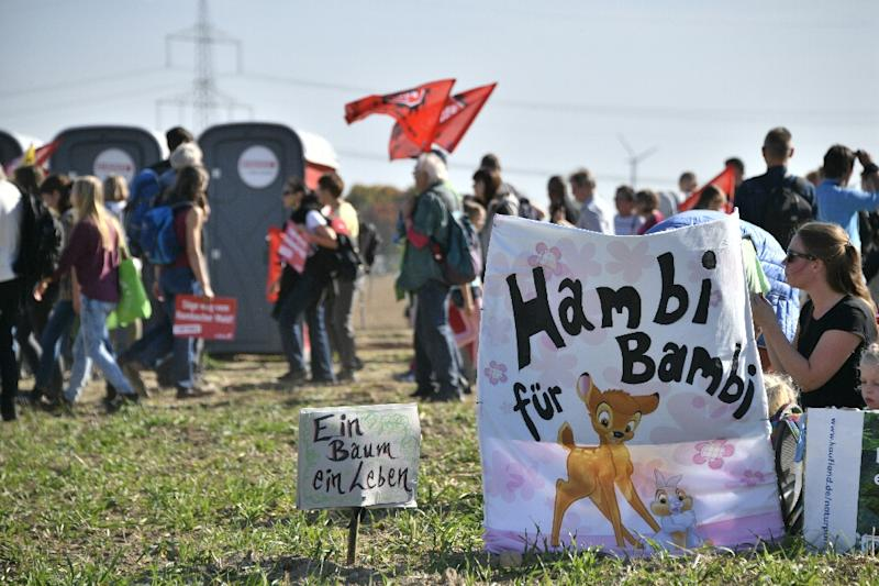 Hambi stays!': Thousands join German forest demo in anti-coal battle