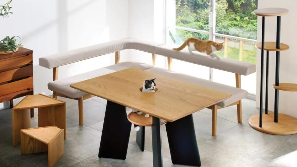 Cat Friendly Furniture From Japan