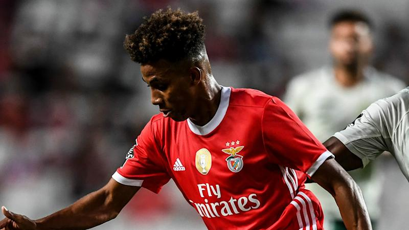 Tottenham sign Gedson Fernandes from Benfica on 18-month loan deal