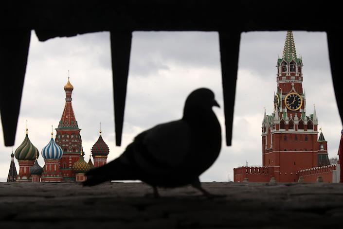 A pigeon sits in the Iberian Gate in a deserted Red Square on April 2, 2020.