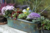 """<p>Celebrate the cooler weather by planting autumnal flowers that are sure to thrive: think chrysanthemums, goldenrods, and pansies. Here's a<a href=""""https://www.oprahmag.com/life/g27632756/fall-flowers/"""" rel=""""nofollow noopener"""" target=""""_blank"""" data-ylk=""""slk:full list of hardy options to get you started."""" class=""""link rapid-noclick-resp""""> full list of hardy options to get you started.</a></p>"""