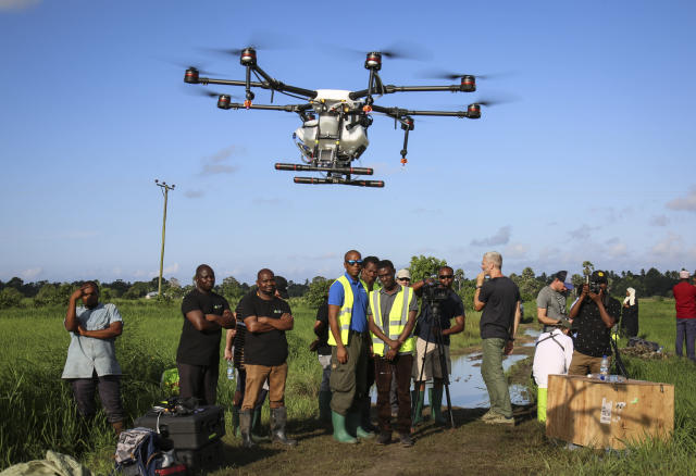 In this photo taken Thursday, Oct. 31, 2019, trainee drone pilots from the State University of Zanzibar learn how to fly a drone to spray the breeding grounds of malaria-carrying mosquitoes, at Cheju paddy farms in the southern Cheju region of the island of Zanzibar, Tanzania. Drones spraying a silicone-based liquid that spreads across the large expanses of stagnant water where malaria-carrying mosquitoes lay their eggs, are being tested to help fight the disease on the island of Zanzibar, off the coast of Tanzania. (AP Photo/Haroub Hussein)