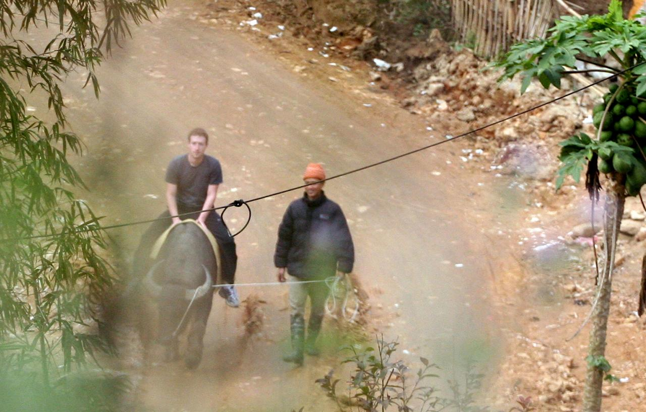 In this Dec. 26, 2011 photo, Facebook website founder Mark Zuckerberg rides a water buffalo in northern resort town of Sapa in Lao Cai province, Vietnam in this picture taken. Vietnam may block its citizens from using to Facebook, but that didn't stop website founder Mark Zuckerberg from spending his vacation there. Zuckerberg spent Christmas Eve in the popular tourist destination Ha Long Bay, local official Trinh Dang Thanh says. (AP Photo/VnExpress, Le Thanh Hieu) EDITORIAL USE ONLY
