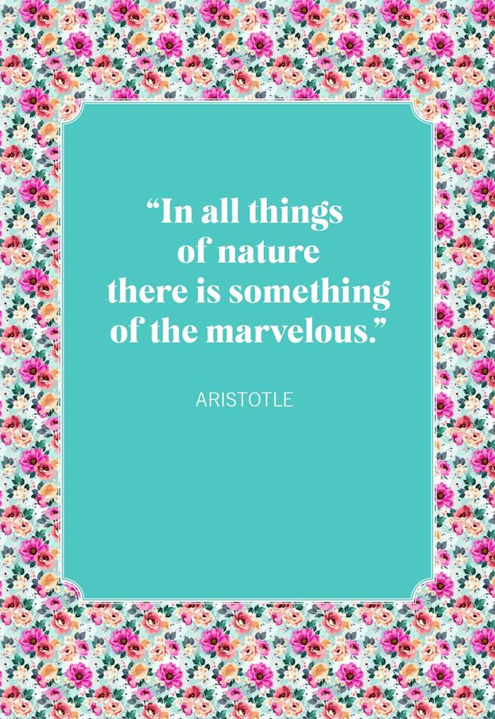 """<p>""""In all things of nature there is something of the marvelous.""""</p>"""