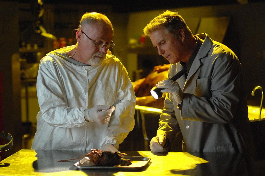 """Dr. Robbins (Robert David Hall) and Grissom analyze a rat who shocked them both when it burst out of a cadaver and began running around the lab. (""""Lab Rats"""" 4/12/2007, Season 7)"""