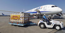 A man moves containers of coronavirus vaccine imported by an All Nippon Airways airplane after it arrived at Narita International Airport in Narita, east of Tokyo on Sunday, Feb. 21, 2021. (Kenzaburo Fukuhara/Kyodo News via AP)