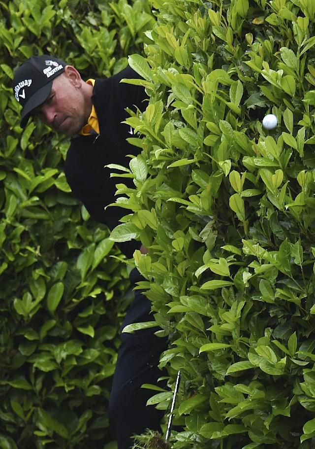 Denmark's Thomas Bjorn plays out of the bushes during day three of the BMW PGA Championships at the Wentworth Club, Virginia Water England Saturday May 24, 2014.(AP Photo/Adam Davy/PA)