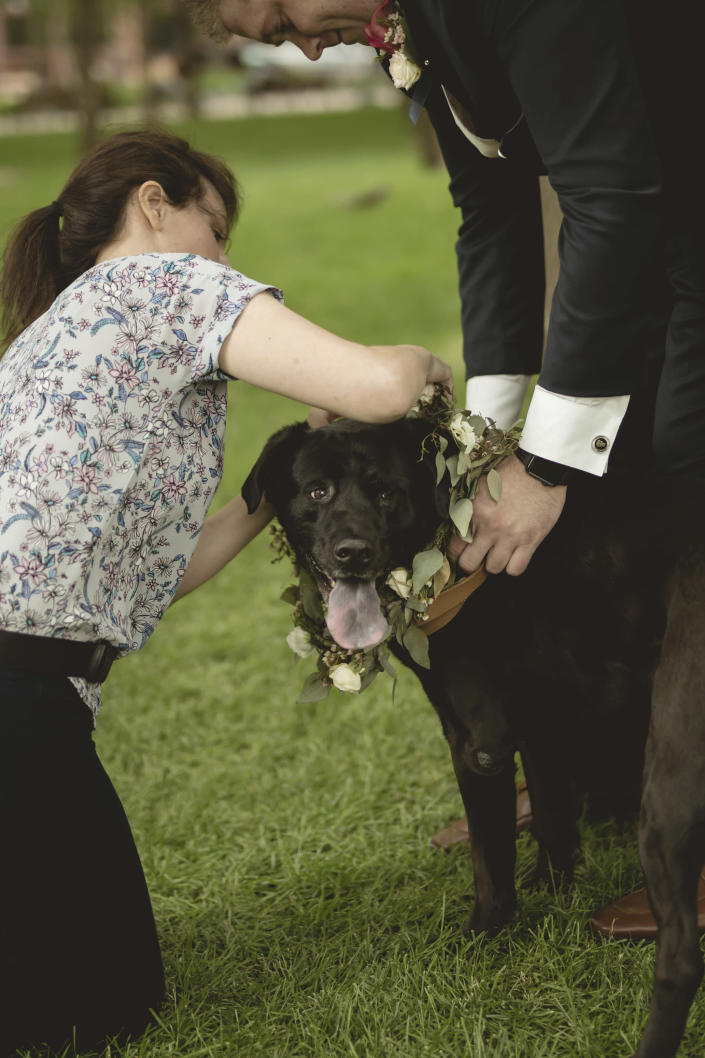 In this June 8, 2018 photo, Lara Leinen of Doggy Social MN LLC prepares Shelby for the wedding of her owners Kelley and Shawn Ballanger in Saint Paul, Minn. It's no longer unusual for brides and grooms to include pets in their wedding photos or even in the ceremony. But it can be tough to manage that along with everything else. (Amber Rishavy/Pixel Dust Photography/Lara Leinen via AP)
