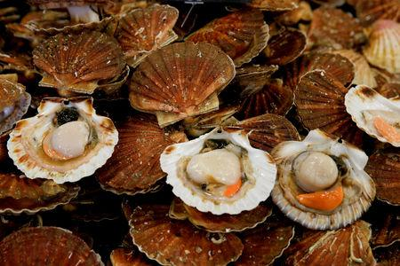 FILE PHOTO: Scallops are seen on a market stall during an annual celebration of scallops in Port-en-Bessin, France, November 12, 2017. Picture taken November 12, 2017. REUTERS/Pascal Rossignol/File Photo