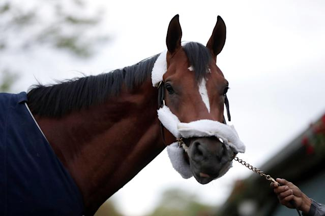 Maximum Security's owner believes his horse is the best in the country, and has issued a $20 million challenge to four Kentucky Derby rivals to beat Maximum Security in any race. (AP Photo/Julio Cortez)
