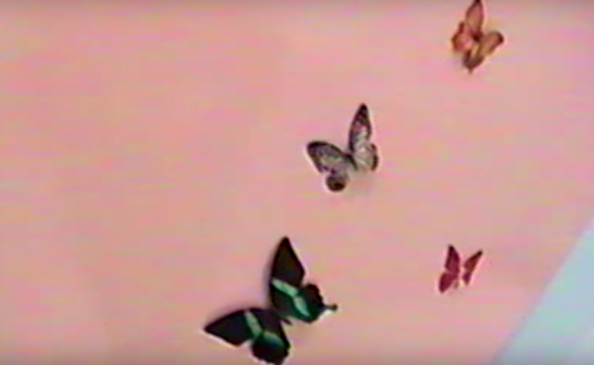 And butterflies in the nursery. Source: Kylie Jenner / YouTube