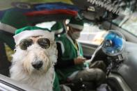 Nicolas Walteros, 52, sits inside a taxi with his dog Colonel using Santa's hats, amid the spread of the coronavirus disease (COVID-19) pandemic, in Bogota