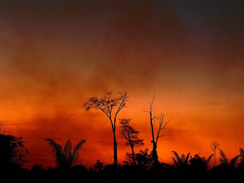 Smoke rises from a burnt area of land a the Xingu Indigenous Park, Mato Grosso state, Brazil, on 6 August 2020: AFP/Getty
