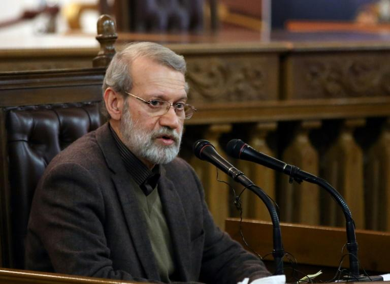 The new toll ups the number of deaths according to Amnesty by almost 50, with the London-based group saying dozens were recorded in Shahriar city; pictured is Iran's Parliament speaker Ali Larijani in Tehran, on December 1, 2019