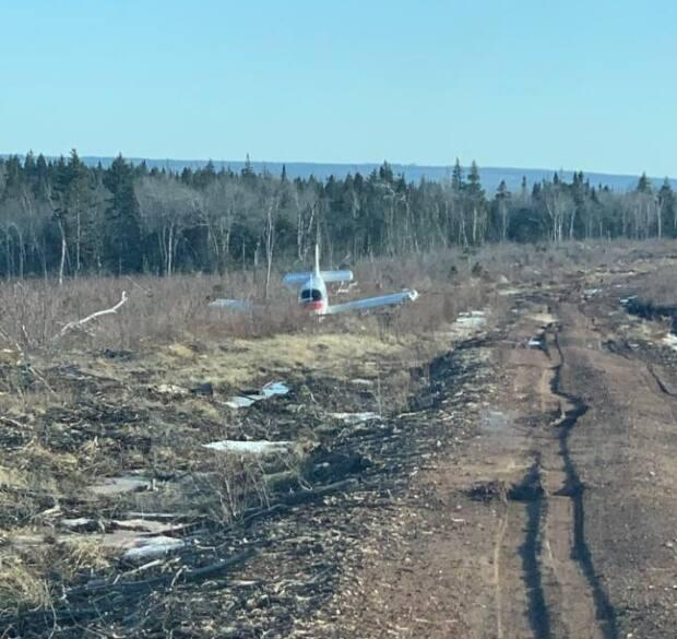 Walter Read was surprised to find the empty plane beside a back road near Sackville.