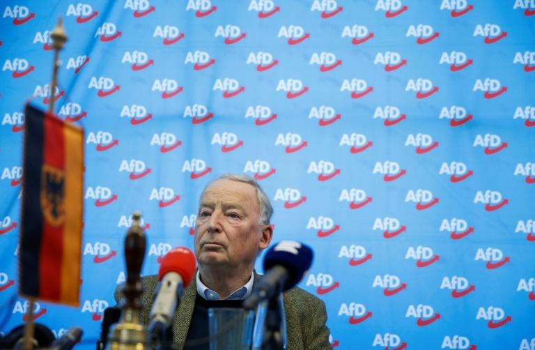 The far-right AFD and the Greens took votes from the CDU in May's EU election and in recent state polls (AFP Photo/Odd Andersen)