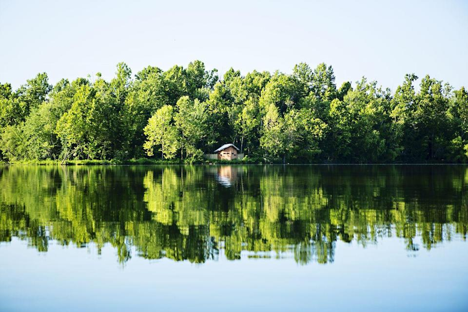 <p>A perfect day in Fayetteville, Arkansas with nature reflecting perfectly against the lake. </p>