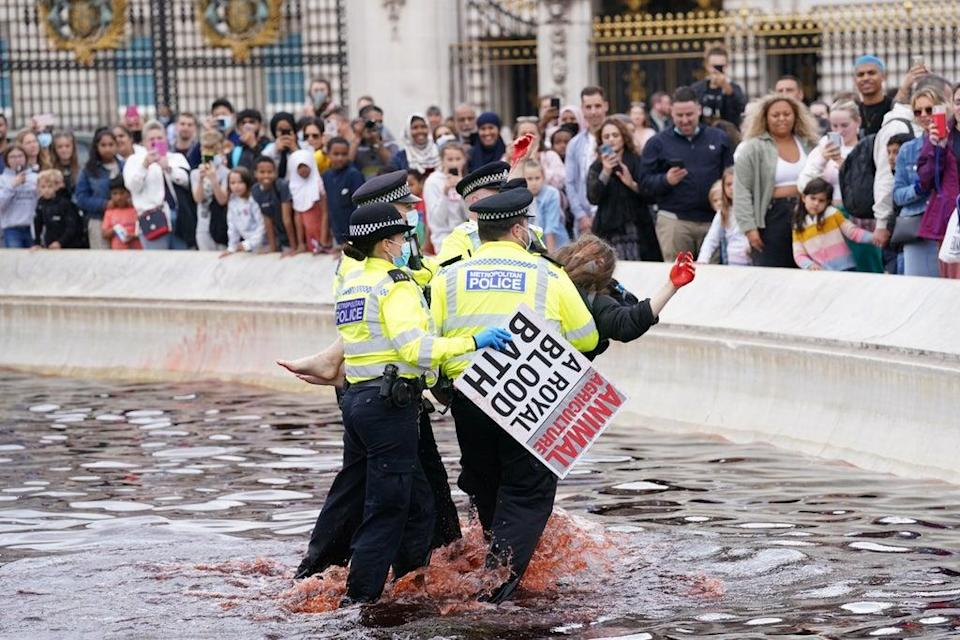 Police officers remove protesters from the fountain at the Victoria Memorial in central London (Jonathan Brady/PA) (PA Wire)