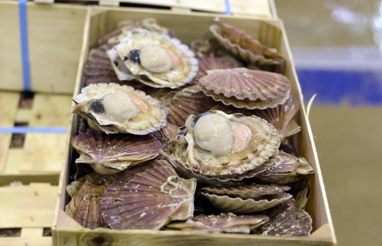 Dozens of French boats confronted a handful of British rivals in the waters late last month over the area's prized scallops
