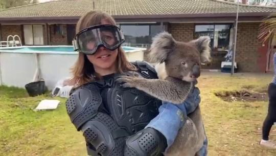 Debi Edward wearing body armour to hold a koala (Credit: Sean Mulcahy/Facebook)
