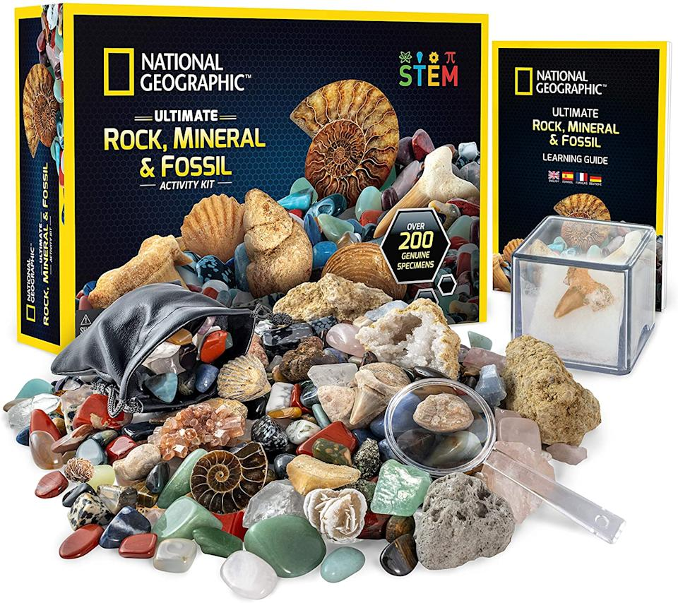 National Geographic Rocks & Fossils Kit 200+ Piece Set, from S$40 (Photo: Amazon)