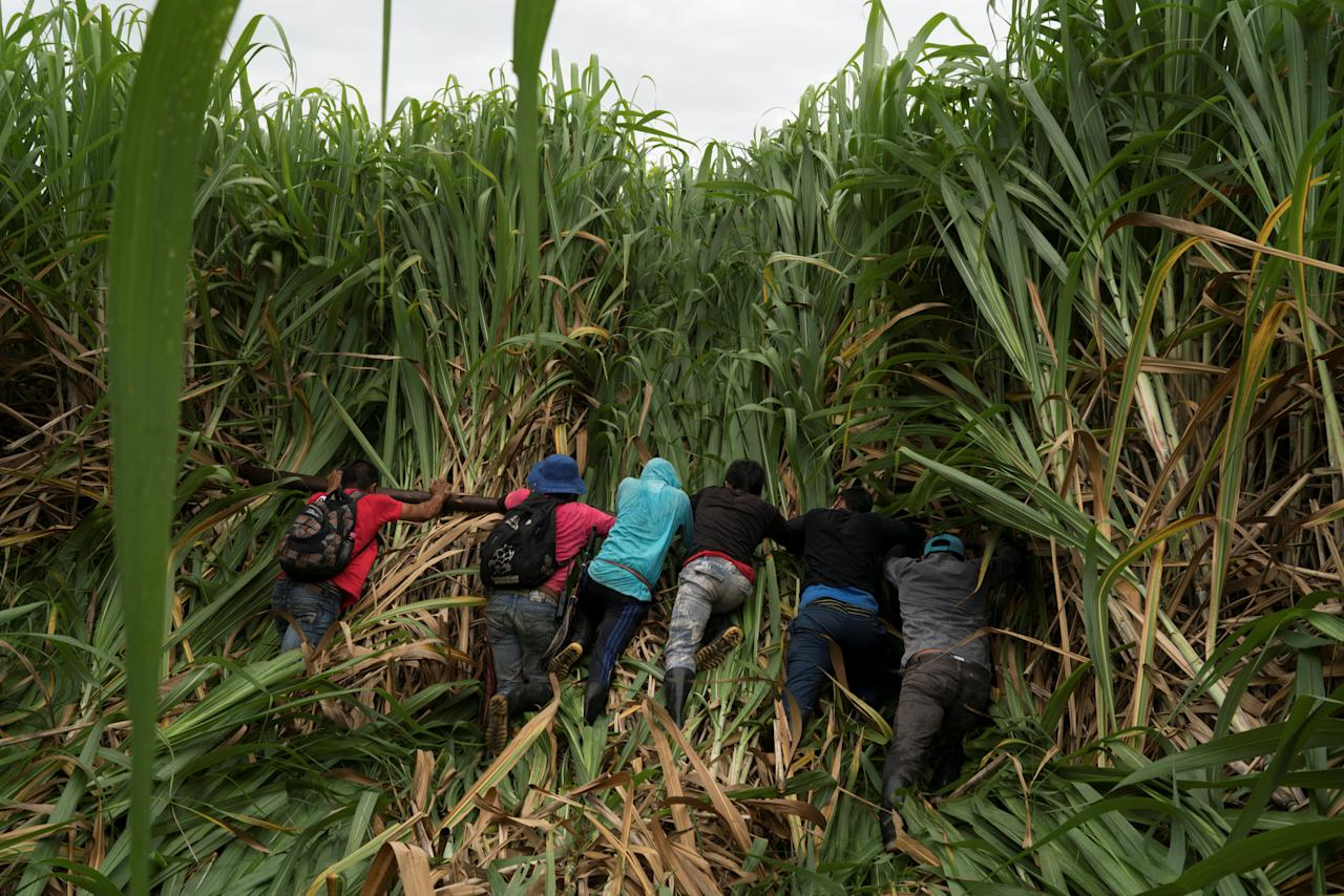 """Members of the Nasa indigenous tribe and """"Liberation of Mother Earth"""" movement flatten sugar cane on a field they claim as their ancestral lands in Corinto, Colombia, May 11, 2017. Picture taken May 11, 2017. REUTERS/Federico Rios"""