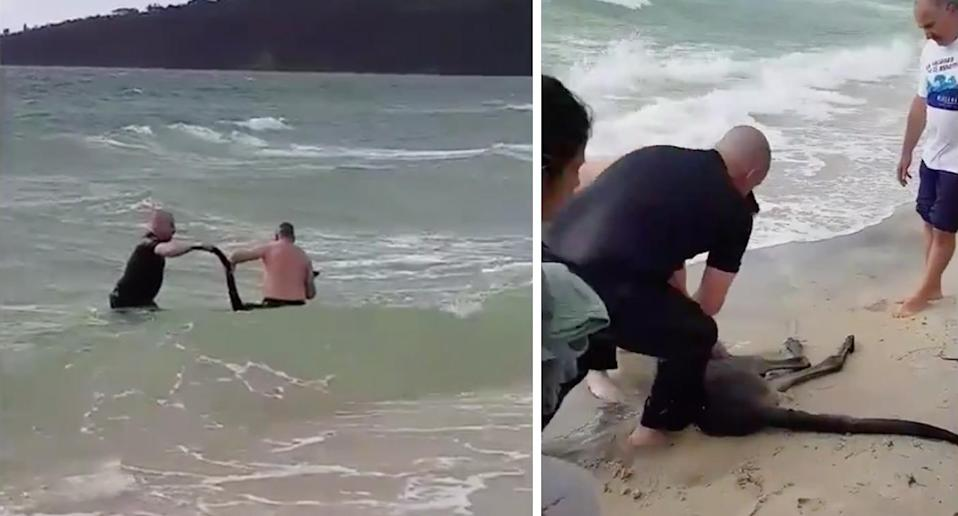 Police rushed into the water to retrieve the roo after its second dip took a bad turn. Source: Vic Police