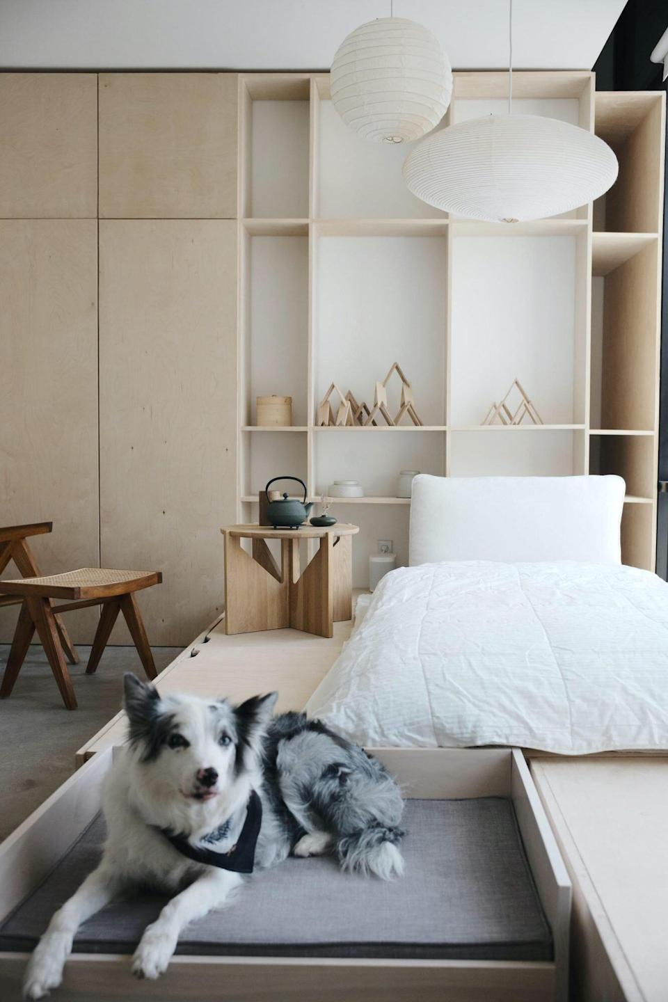 Space of the Week, Guest Room