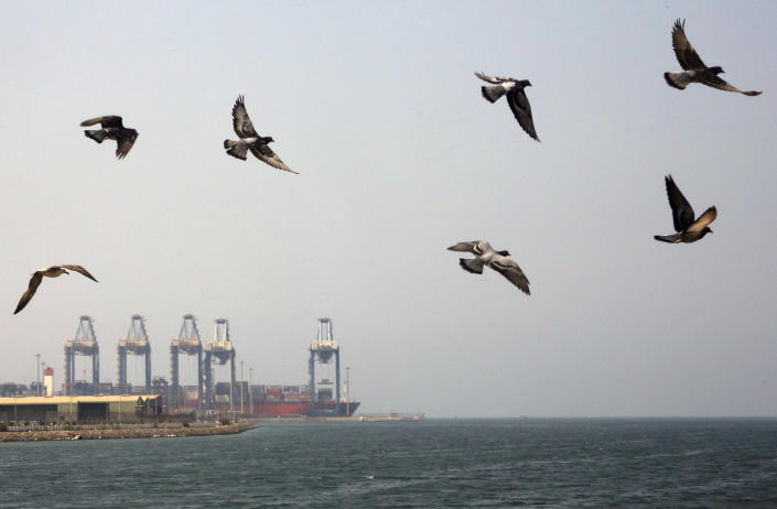 Seagulls fly over the Red Sea port city of Jiddah, Saudi Arabia, Friday, Oct. 11, 2019. Iranian officials say two missiles struck an Iranian tanker traveling through the Red Sea off the coast of Saudi Arabia. (AP Photo/Amr Nabil)