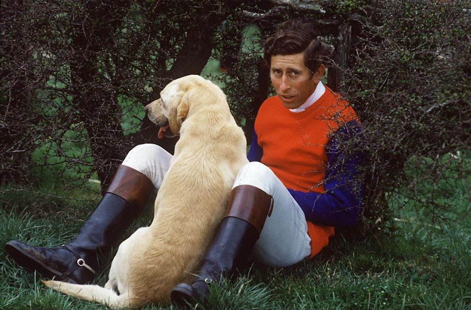 <p>Prince Charles with his yellow lab Harvey at the Quorn Hunt Cross Country Event.</p>