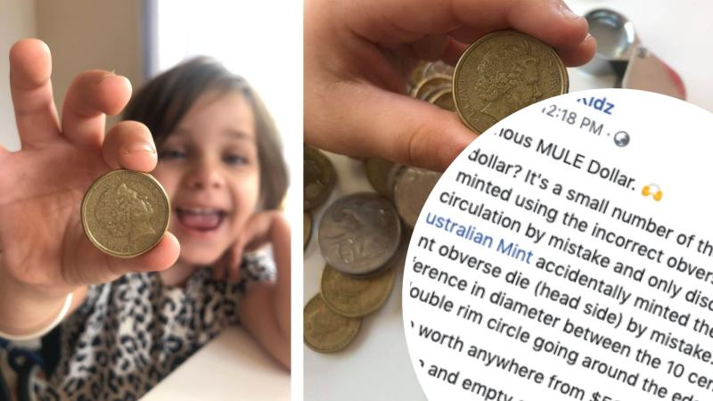 Pictured: Child with precious 'mule dollar', Facebook text.
