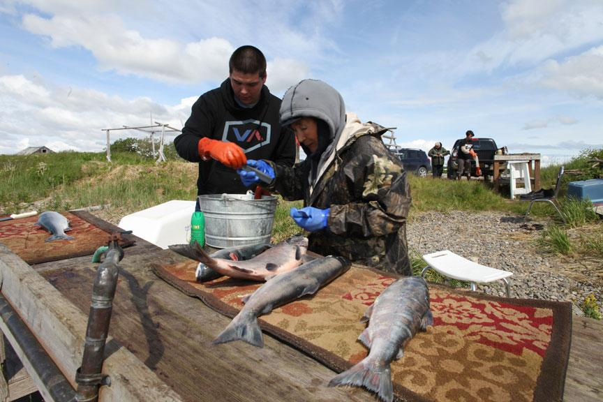 Eric Reimers (l.) and his maternal grand father, Elia Anelon (r.), cleaning their salmon on the shore of Lake Iliamna just as native Alaskans have done for generations.