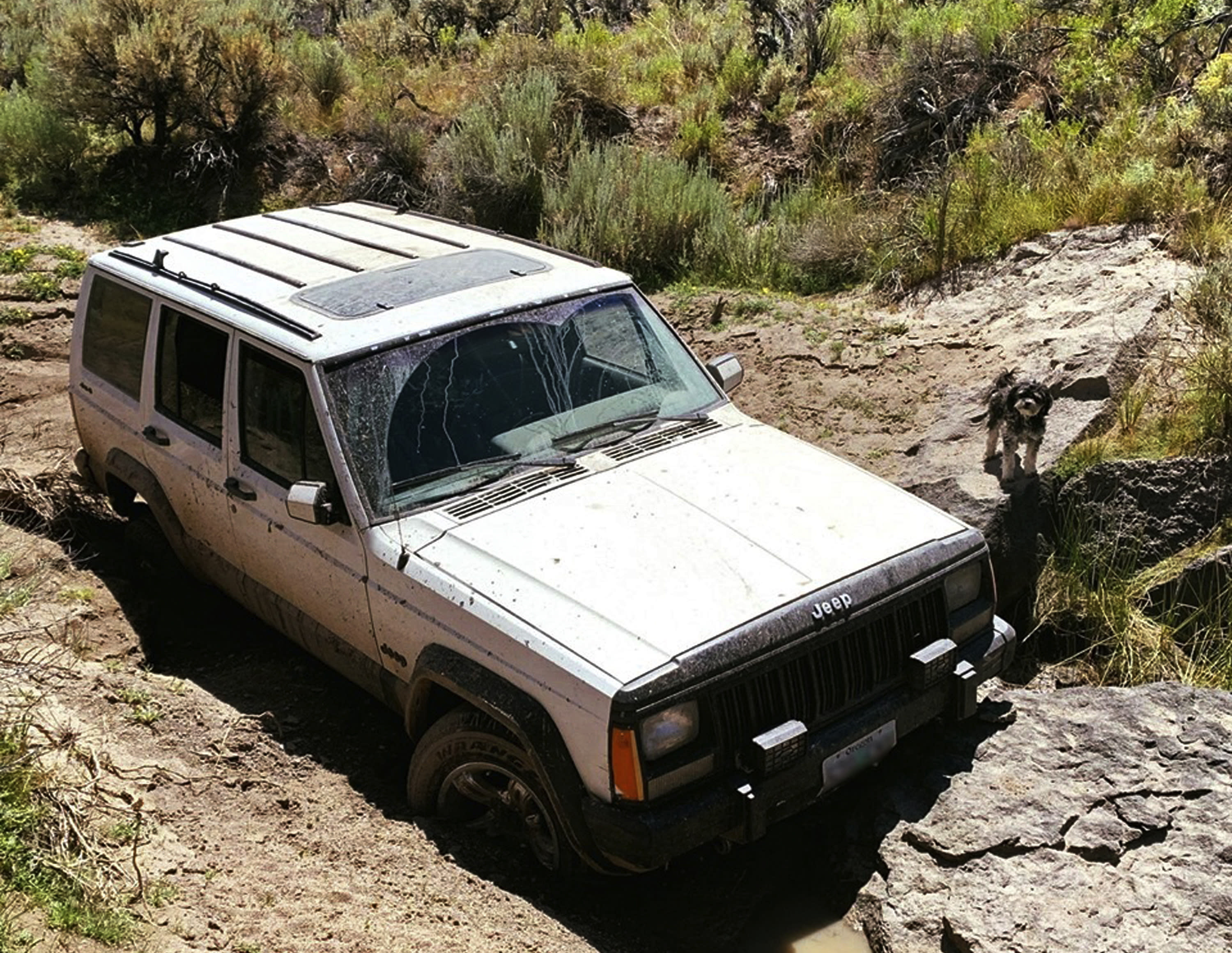 This undated photo provided by the Oregon State Police shows a jeep and dog belonging to a 73-year-old man who was found by a mountain biker on July 18, 2019. The 73-year-old man who was stranded in the remote Oregon high desert for four days with his two dogs was rescued when the long-distance mountain biker discovered him near death on a dirt road, authorities said Thursday, July 25. (Oregon State Police via AP)
