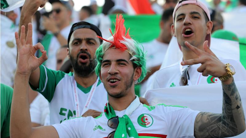 Afcon 2019: Military planes to fly Algeria fans to Cairo for Nigeria clash