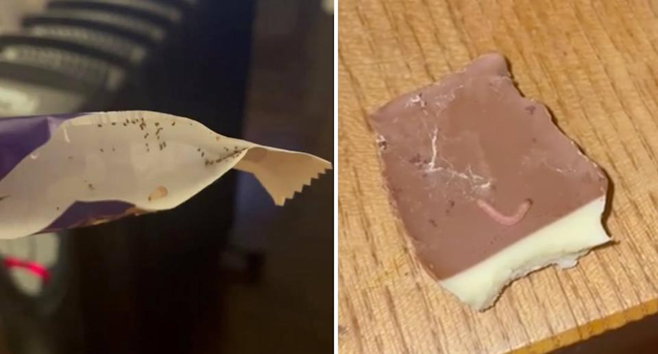 A Freddo Frog package pictured with dozens of bugs in it on the left, and on the right is a photo of what appeared to be maggots on a chocolate.