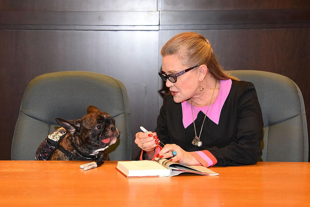 <p>We bet Gary knew all about the Ford affair before the public did. Fisher's pup, who was always by her side, attended a book signing at the Grove in L.A. on Nov. 28 — and even had his own seat <i>and</i> Sharpies. (Photo: Araya Diaz/WireImage) </p>