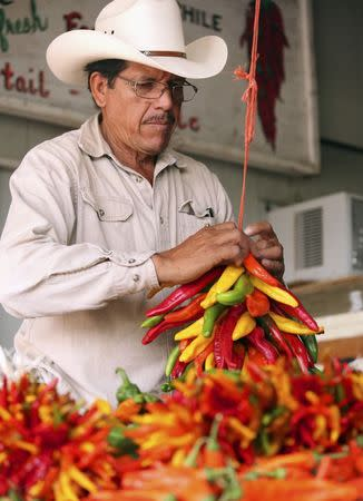A local ties a ristra to dry chile peppers in Hatch, New Mexico in an undated photo provided by the New Mexico Tourism Department. REUTERS/New Mexico Tourism Department/handout via Reuters