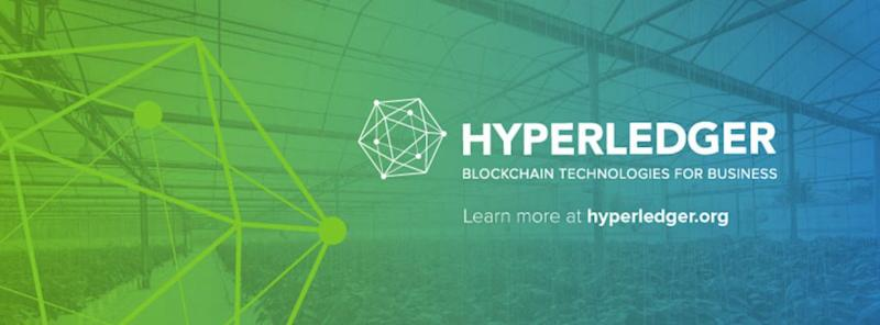 Hyperledger welcomes nine new members to enterprise blockchain community