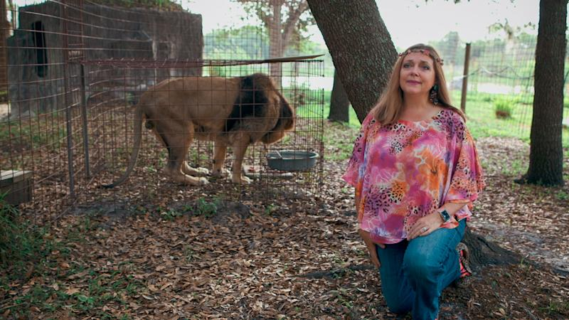 "Carole Baskin, the founder of Big Cat Rescue, is featured in the docu-series ""Tiger King."" She was married to Don Lewis, a man who went missing in 1997."
