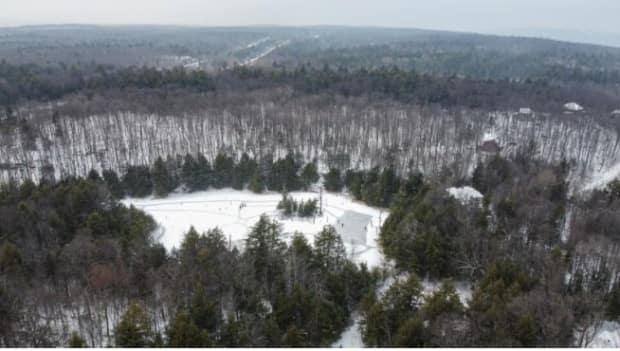 The forest will be owned by the Action Chelsea for Respect of the Environment group, while local residents plan to create a stewardship committee.