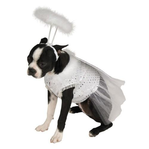 Angel Pet Costume. (Photo: Amazon)