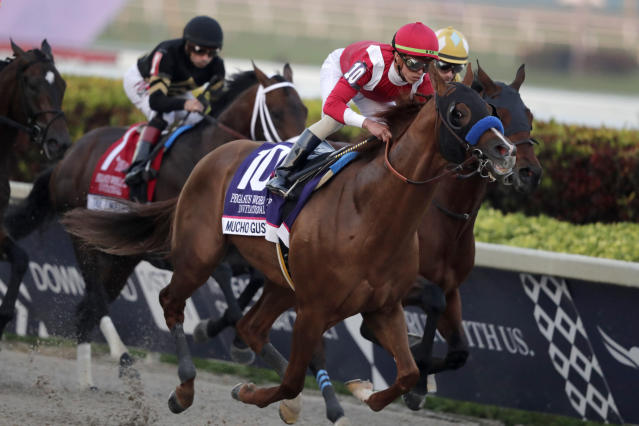 Jockey Irad Ortiz, Jr., atop Mucho Gusto (10), competes during the Pegasus World Cup Invitational horse race, Saturday, Jan. 25, 2020, at Gulfstream Park in Hallandale Beach, Fla. Mucho Gusto won the race. (AP Photo/Lynne Sladky)