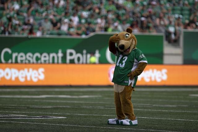 "REGINA — Gainer the Gopher has found out this week just how much controversy a makeover can cause.Gainer, who has been the mascot for the CFL's Saskatchewan Roughriders since 1977, unveiled a new look at the team's home opener on July 1 at Mosaic Stadium.Previously, Gainer sported a chunky body with a gentle face featuring a shy grin and black eyes. Gainer's new look — a slimmer body and a face that has an open-mouth smile and intense green eyes — sent the passionate Riders fanbase into a frenzy on social media.Twitter, Instagram and Facebook exploded with memes and GIFs, many mocking Gainer's new look. The makeover went viral with the hashtags BringBackGainer and NotMyGainer dominating the posts.Maria Vincente, a Riders fan who lives in Edmonton, started an online petition after the game. Vincente's petition, which had 4,375 signatures as of Friday morning, states ""Someone has replaced Gainer with an impostor. Rider Nation wants the real Gainer back.""The petition has a huge number of comments, most of which are negative when it comes to the new and improved Gainer. The comments describe the new Gainer as ""creepy and evil looking,"" ""a psychotic anorexic chipmunk"" and ""crack binge Gainer.""The Riders organization chose to remain silent on the controversy this week, issuing a statement saying, ""We've decided to let Gainer speak for himself.""Yet the social media frenzy continued. Even former Saskatchewan Premier Brad Wall tossed a few tweets into the fray. He made his support of the former Gainer quite clear — ""Just met MidlifeCrisisGainer. Hair is dyed, some sort of fad diet. This must be changed. ClassicGainer"".The new Gainer will get another chance to win over the fans on Saturday night when the Riders host the Calgary Stampeders.Jeff DeDekker, The Canadian Press"