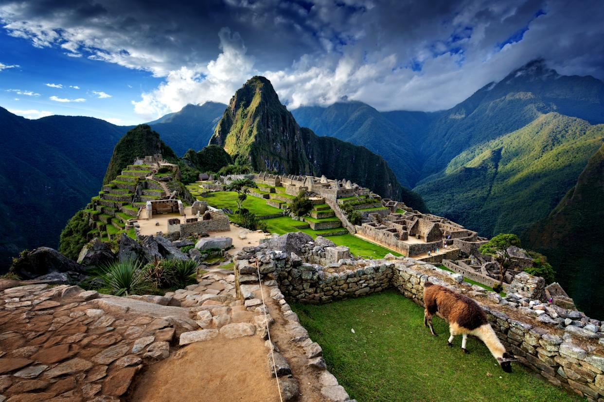 "<h1 class=""title"">Llama standing by stone steps leading up from old ruins of Machu Picchu, Peru, spring evening</h1> <cite class=""credit"">Photo: Getty Images</cite>"