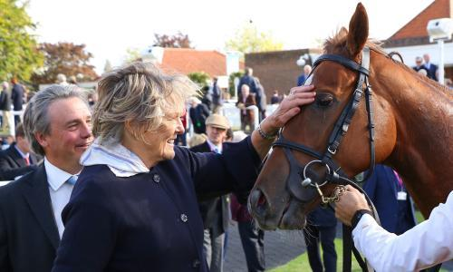 1,000 Guineas: can Millisle land Jessica Harrington more glory?