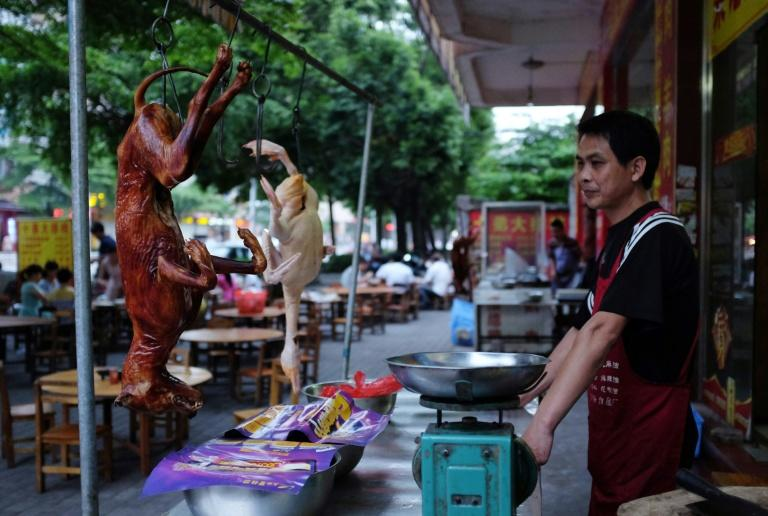 A cook waits for customers behind a roasted dog outside a restaurant in Yulin, in China's southern Guangxi region