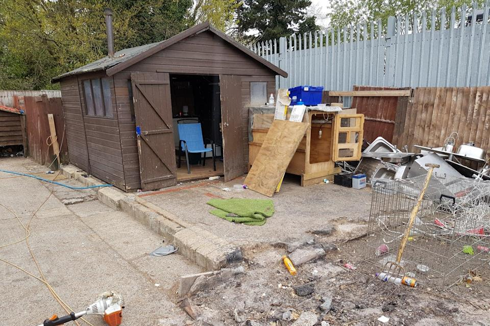 <p>The dogs were checked by a vet at the site </p> (Surrey Police)