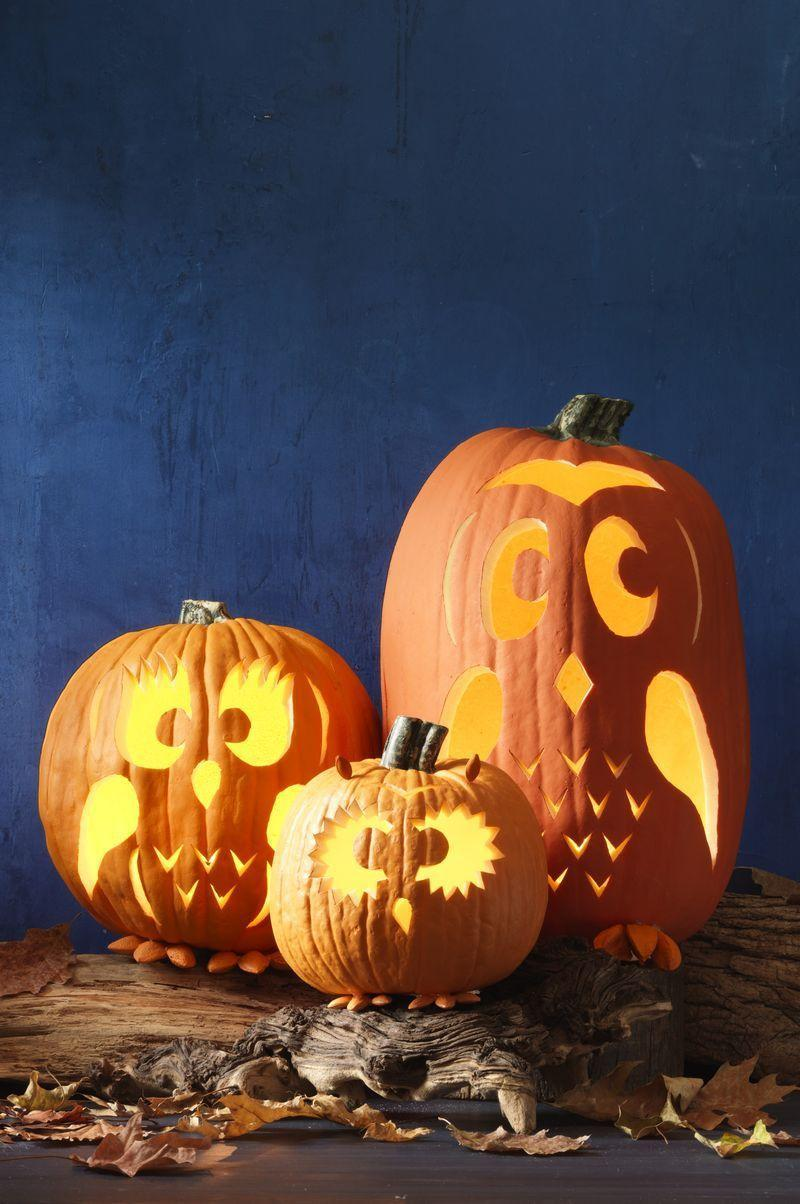 """<p>When the sun goes down, these pumpkins are a hoot. Print and tape the templates (<a href=""""http://wdy.h-cdn.co/assets/15/38/1442607881-baby-owl.png"""" rel=""""nofollow noopener"""" target=""""_blank"""" data-ylk=""""slk:Baby Owl"""" class=""""link rapid-noclick-resp"""">Baby Owl</a>, <a href=""""http://wdy.h-cdn.co/assets/15/38/1442607915-mom-owl.png"""" rel=""""nofollow noopener"""" target=""""_blank"""" data-ylk=""""slk:Mama Owl"""" class=""""link rapid-noclick-resp"""">Mama Owl</a>, and <a href=""""http://wdy.h-cdn.co/assets/15/38/1442607944-dad-owl.png"""" rel=""""nofollow noopener"""" target=""""_blank"""" data-ylk=""""slk:Daddy Owl"""" class=""""link rapid-noclick-resp"""">Daddy Owl</a>) to the front of a hollowed-out pumpkin, then use a transfer tool or metal skewer to poke holes along the outline of the template.</p><p>Remove and discard the template, then use a carving knife to cut along the design. Paint almonds and Brazil nuts orange and glue in place for feet and ears.</p>"""